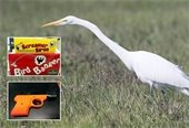 Egret and noisemakers